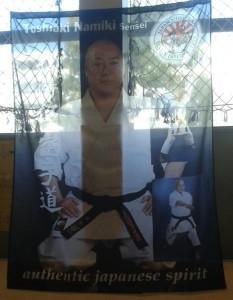 Sensei Namiki - Fahne